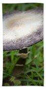 Mushroom Beach Towel