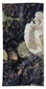 Mushy Mushrooms Beach Towel