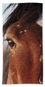 Mustang Battle Wounds Beach Towel
