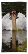 Mute Swan Pictures 141 Beach Towel