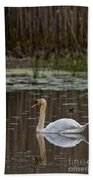 Mute Swan Pictures 143 Beach Towel