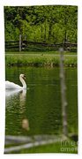 Mute Swan Pictures 195 Beach Towel