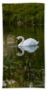 Mute Swan Pictures 85 Beach Towel