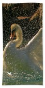 Mute Swan Beach Towel