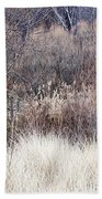 Muted Colors Of Winter Forest Beach Towel