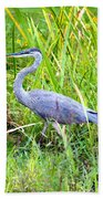 My Blue Heron Beach Towel by Greg Fortier