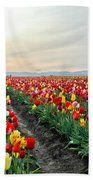 My Touch Of Holland 2 Beach Towel