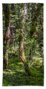 Mysterious Forest Beach Towel