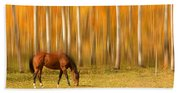 Mystic Autumn Grazing Horse Beach Towel