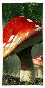 Mystic Mushroom Beach Towel