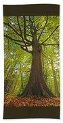 Mystical Forest Tree Beach Towel