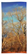 Naked Branches Beach Towel