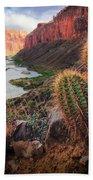 Nankoweap Cactus Beach Towel