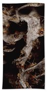 Nasute Termite Nest Amazonian Peru Beach Towel