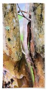 Natural Abstract Crepe Mertle Beach Towel