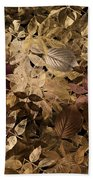 Naturaleaves - Gla02f Beach Towel