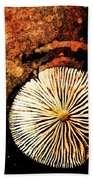 Nature Abstract 14 Beach Sheet