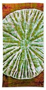 Nature Abstract 5 Beach Towel
