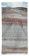 Nature Marking Time Beach Towel