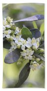 Nature Path Flower Beach Towel