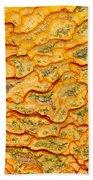 Nature Pattern Iron Oxide Mineral Sediment Crust Beach Towel