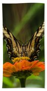 Nature Stain Glass Beach Towel