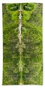 Natures Totem Beach Towel