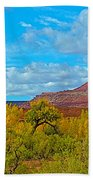 Needle-topped Butte From Highway 211 Going Into Needles District Of Canyonlands National Park-utah  Beach Towel
