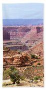 Needles Grand Canyon Beach Towel by Adam Jewell