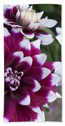 Neighbors Garden Treasures Beach Towel
