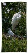 Nest Lookout Beach Towel