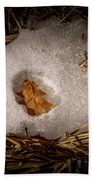 Nesting Leaf Beach Towel