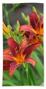 New Daylilies Beach Towel