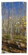 New Mexico Series -  Bare Autumn Beach Towel