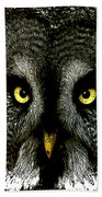 New Photographic Art Print For Sale   Great Grey Owl Beach Towel