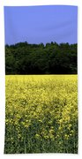 New Photographic Art Print For Sale Yellow English Fields Beach Towel