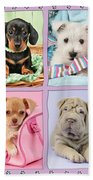 New Puppy Multipic Beach Towel by Greg Cuddiford
