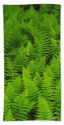 New York Ferns Beach Towel
