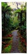 New Zealand Rainforest Beach Towel