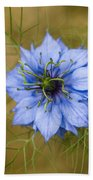 Nigella Damascena Beach Towel