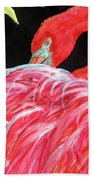 Night Flamingo Beach Towel