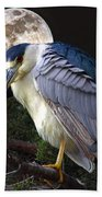 Night Heron Beach Towel