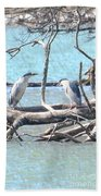Night Herons Beach Towel