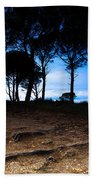 Night In The Forest Beach Towel