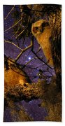 Night Owls Beach Towel