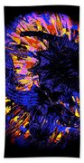 Night Pumpkin Iridescence Beach Towel