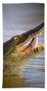 Nile Crocodile Swollowing Fish Beach Towel