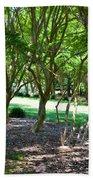 Norfolk Botanical Garden 3 Beach Towel