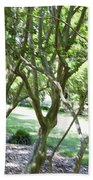 Norfolk Botanical Garden 7 Beach Towel