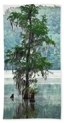 North Florida Cypress Swamp Beach Towel